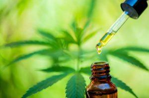 Choosing The Right CBD Dosage